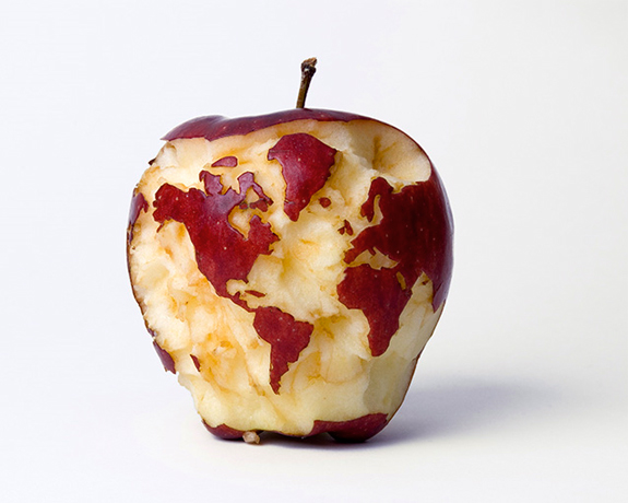 Apple Globe, 2007, digital C-print, 16 x 20