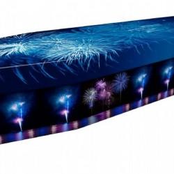 3907 - Fireworks 1