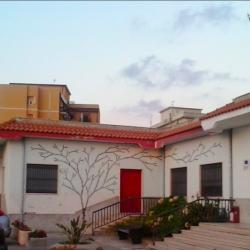 Opiemme, Albero Legalita_, Pizzo, 2013