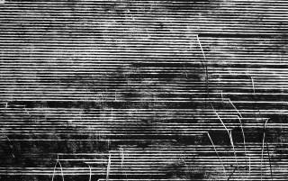 Sten+Lex, Matrici Distrutte alla Wunderkammern Art Gallery - foto di Stefano Pontecorvi