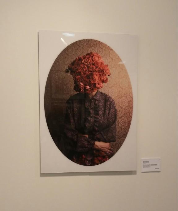 Flower Portrait, Aron Slevin Galleria Alidem