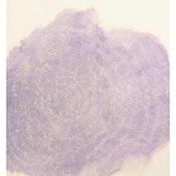 claudio-gaddini-spirale-2015-tecnica-mista-su-polietilene-e-polipropilene-cm-152x107