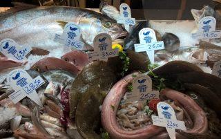 Il pesce fresco dell'Antica Pescheria Galluzzi