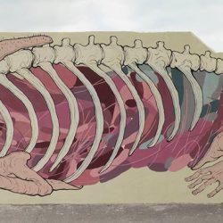 Salamandra, NemO's + Nulo