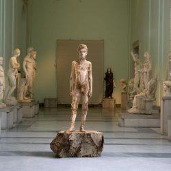 Autarchia | Aaron Demetz al MANN Museo Archeologico Nazionale di Napoli