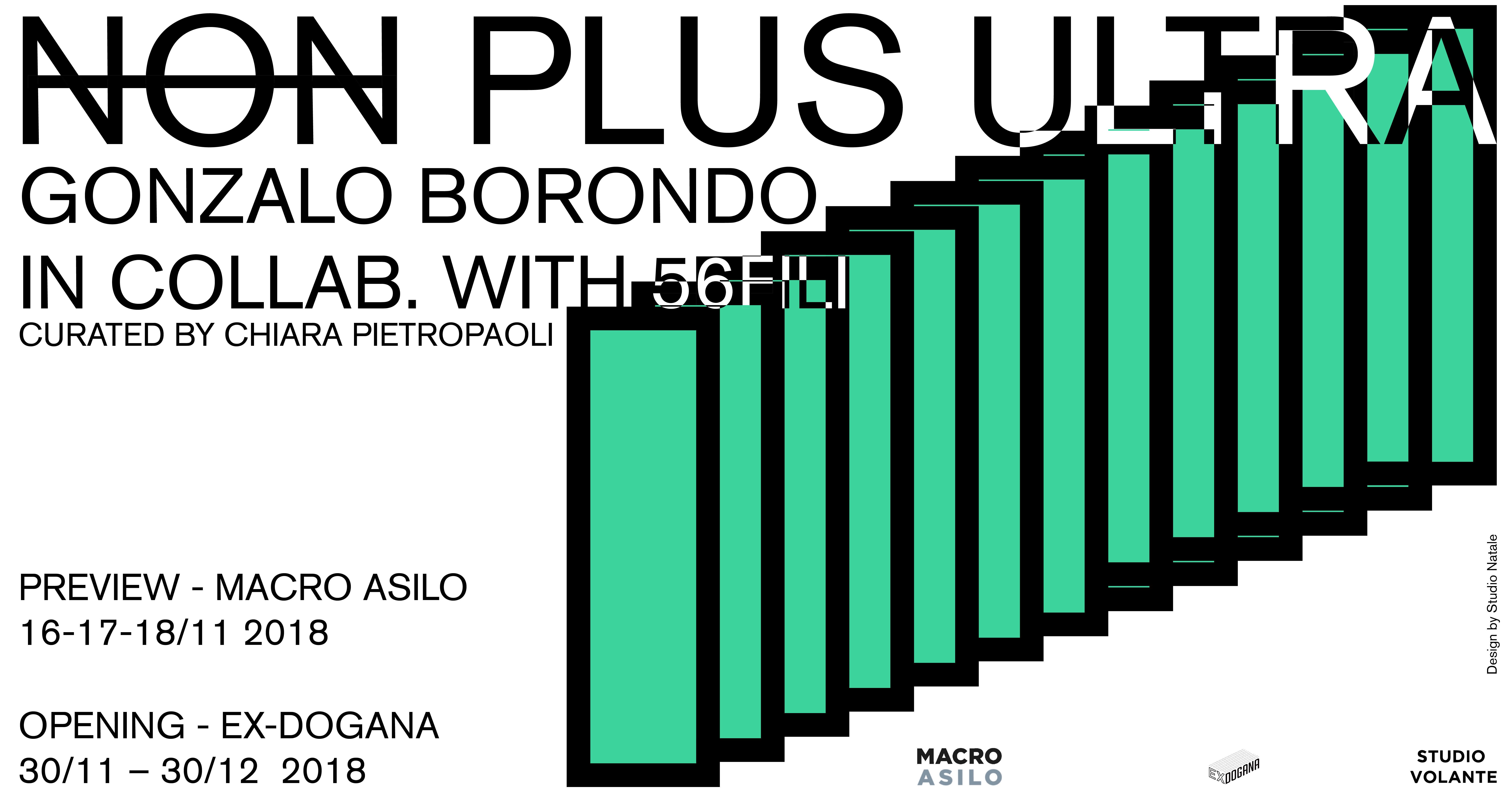 Non Plus Ultra | Gonzalo Borondo | Macro Asilo – exDogana
