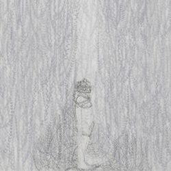 Elisa Bertaglia, Cendriers(particolare), 2018, carboncino e grafite su fogli trasparenti di poliestere sovrapposti, cm. 30x23