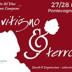 Vitigno-e-Terroir-Ais-Campania-vino-Salerno-ziguline